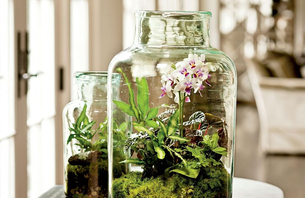 How to: Make a DIY Indoor Terrarium