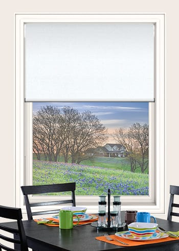 Ice Elite Blockout Double Roller Blinds